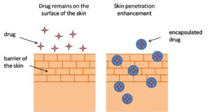 Schematic picture of drug delivery to the skin. On the left - drug do not penetrate through the skin barrier, on the right - lipid nanoparticles promote the penetration of the drug to the deeper layers of the skin.